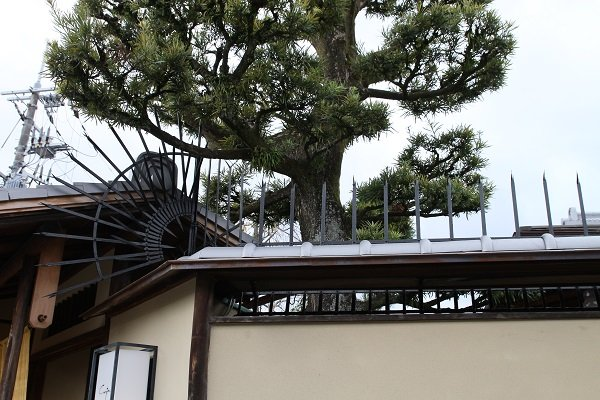 Japanese traditional fence guard on traditional house