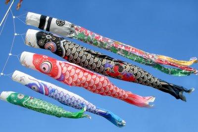 carp flags koinobori for children's day