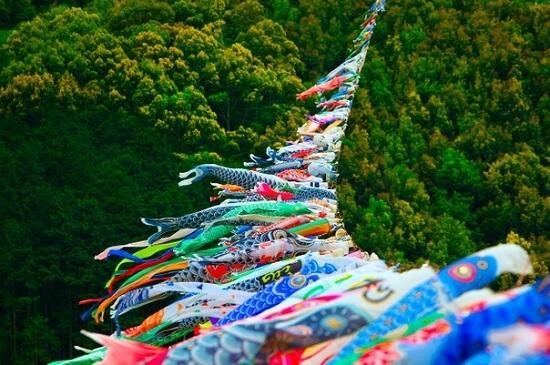 koinobori festival in shimanto river