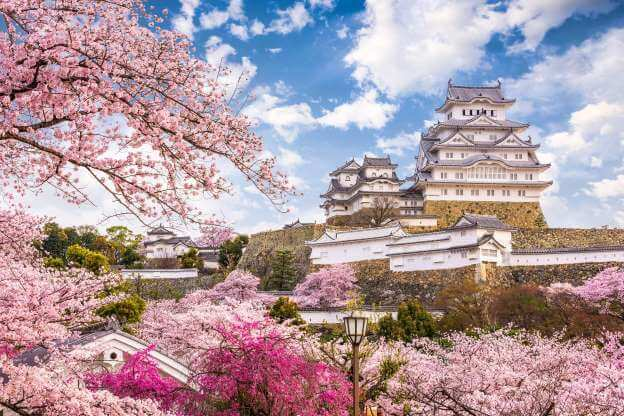 Japan's national heritage you must visit - Himeji castle