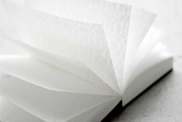 Mino Washi Japanese paper, a Japanese traditional craft, beautiful notebook