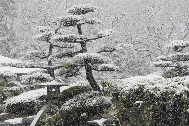 winter snowing scene in Japan