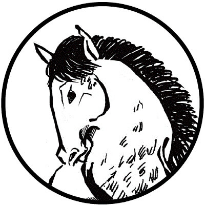 Shodo brush for Japanese calligraphy writing Shodo, material animal horse