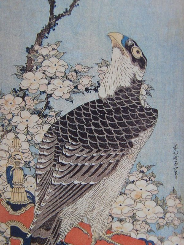 Ukiyo-e, Japanese woodblock print, bird-and-flower paint by Katsushika Hokusai